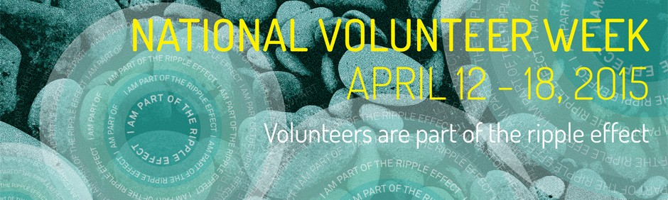 National Volunteer_Web Banner
